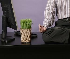 Кто такой фрилансер (freelancer)