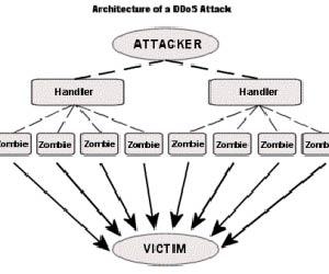 Компьютерные атаки DDOS кибертерроризм