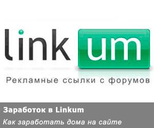 Как заработать дома на форумах в «Linkum»